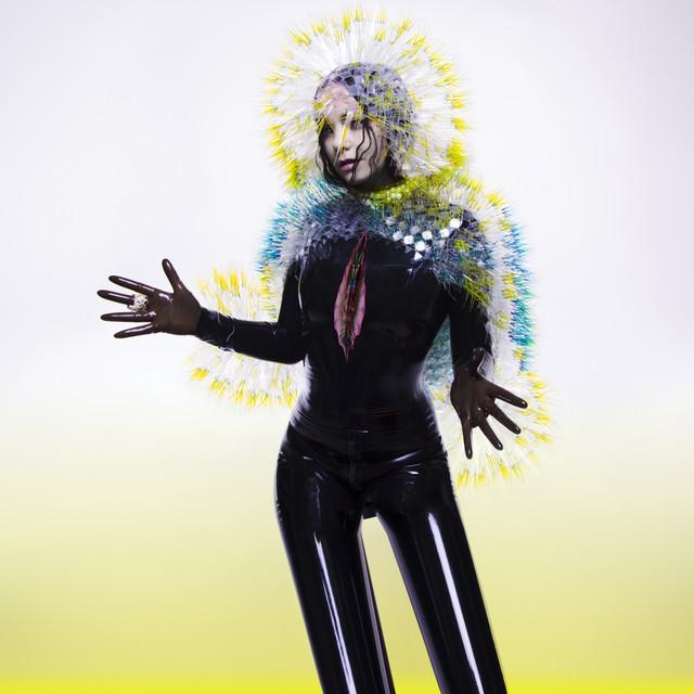 Skivomslag för Björk: Vulnicura