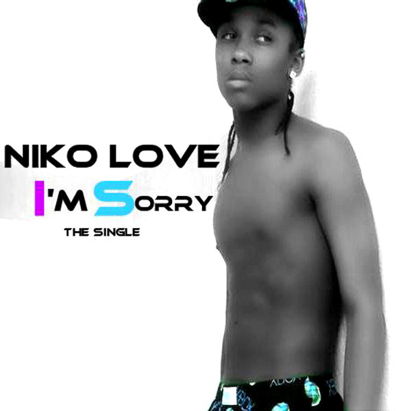i m sorry a song by niko love on spotify