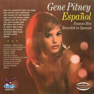 Espanol - Famous Hits Recorded In Spanish album