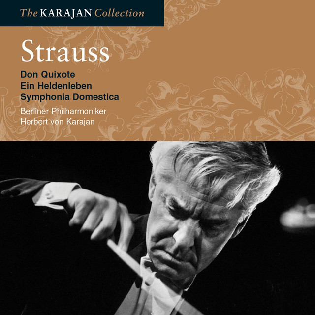 Strauss: Don Quixote; Sinfonia Domestica; Ein Heldenleben Albumcover