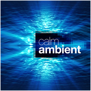 Calm Ambient Albümü