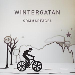 Wintergatan Sommarfågel