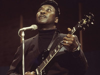 Picture of Muddy Waters