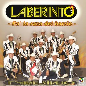 Pa'la Raza Del Barrio Albumcover