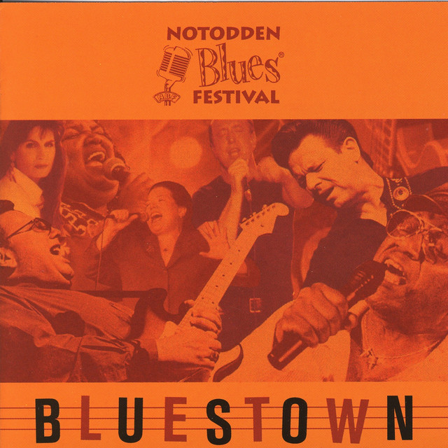 Various Artists Notodden Bluesfestival - Bluestown album cover