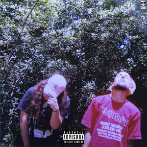 Album cover for high tide in the snake's nest by $uicideboy$