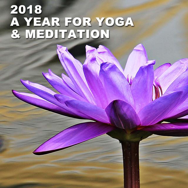 2018 - A Year for Yoga & Meditation