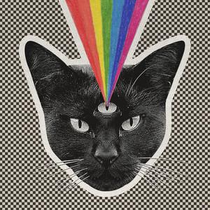 Black Cat Albumcover