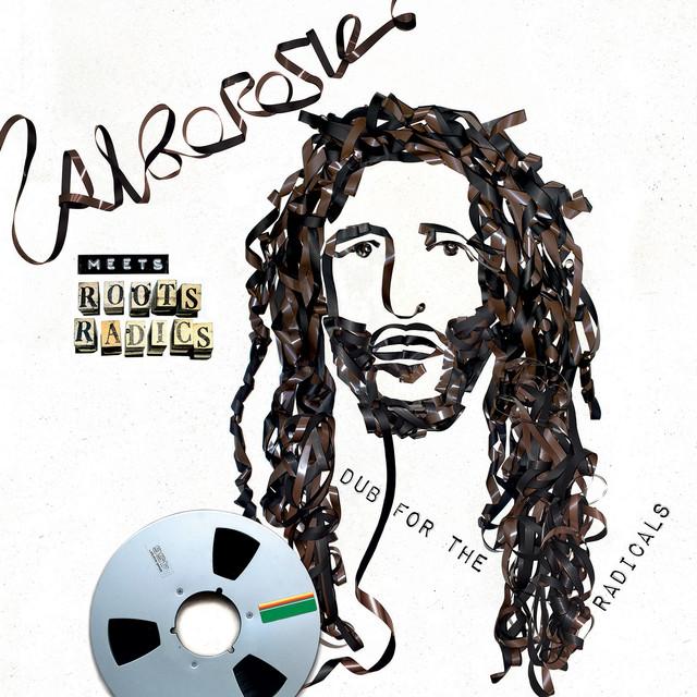 Alborosie Meets Roots Radics: Dub For The Radicals
