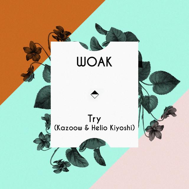 Try (Kazoow & Helio Kiyoshi)