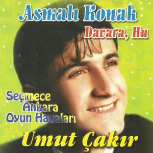 Asmalı Konak / Davara Hu (Seçmece Ankara Oyun Havaları) Albümü