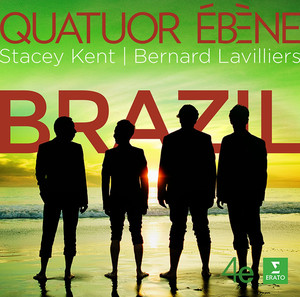 Brazil Albümü