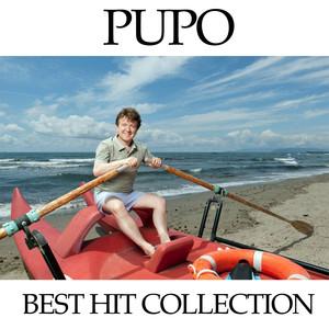 The Best of Pupo album