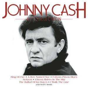 Johnny Cash It Ain't Me Babe cover