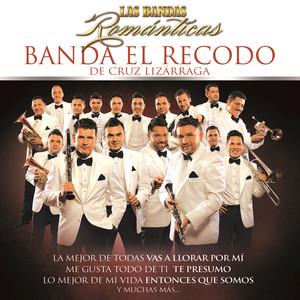 Banda El Recodo Somos Ajenos cover