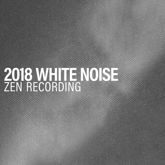 2018 White Noise Zen Recording