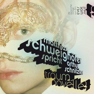Die Traumnovelle (Ungekürzt) Audiobook