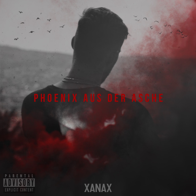 Phoenix Aus Der Asche A Song By Xanax On Spotify