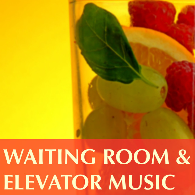 Waiting Room and Elevator Music - Background Calming Music Specialists to Take a Break and Just Relax Albumcover