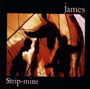 Strip Mine album