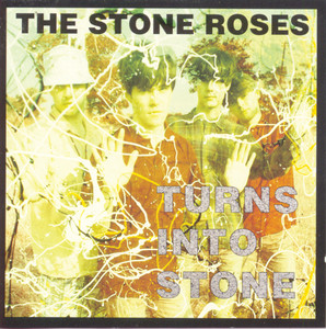 Turns Into Stone album