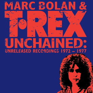 Marc Bolan Over The Flats cover