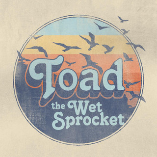 Foto de Toad The Wet Sprocket