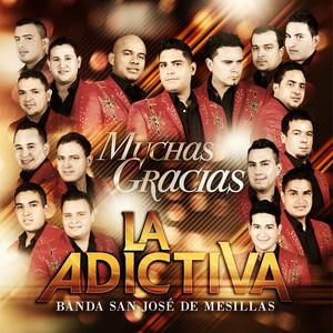 Muchas Gracias Albümü