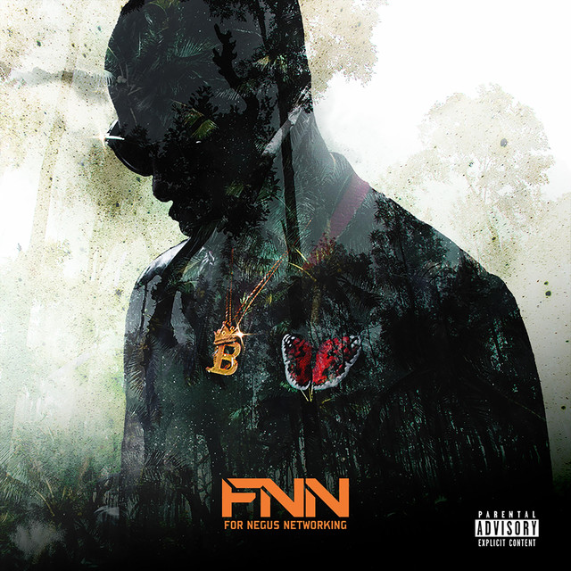 Album cover for FNN by B-Will