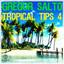 Gregor Salto - Tropical Tips 4 cover
