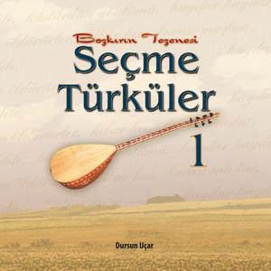 Seçme Türküler 1 (Bozkırın Tezenesi) Albümü
