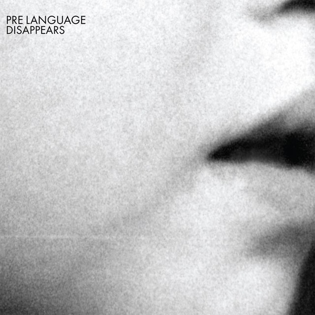 Album cover for Pre Language by Disappears