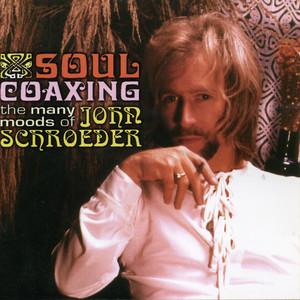 John Schroeder Wichita Lineman cover