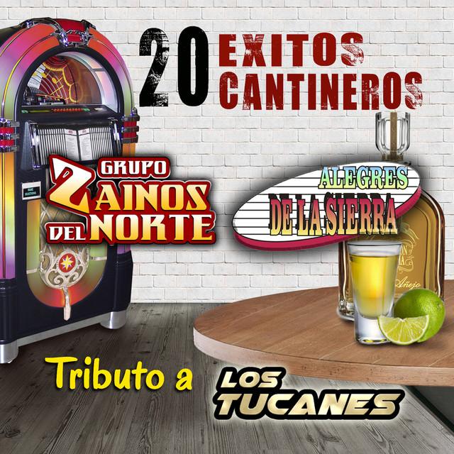 20 Exitos Cantineros