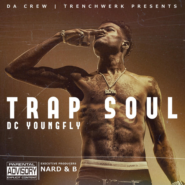 Album cover for Trap Soul by DC Young Fly