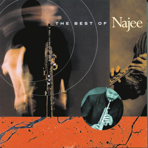 The Best of Najee album