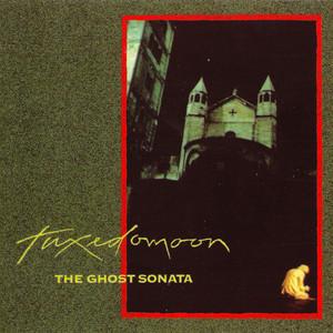 The Ghost Sonata album