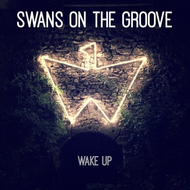 Swans on the Groove