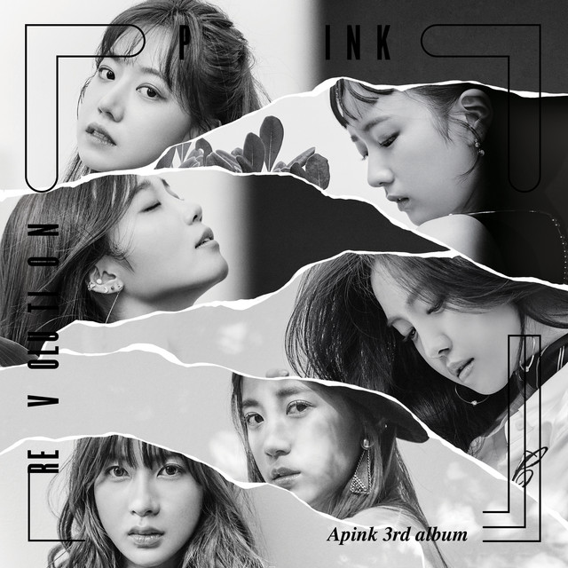 Album cover for Pink Revolution by Apink