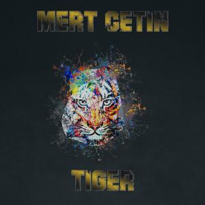 Tiger Albümü