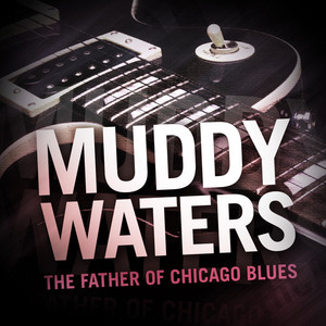 Muddy Waters - The Father of Chicago Blues Albümü
