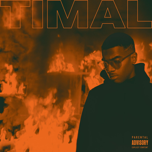 Album cover for Trop chaud by Timal