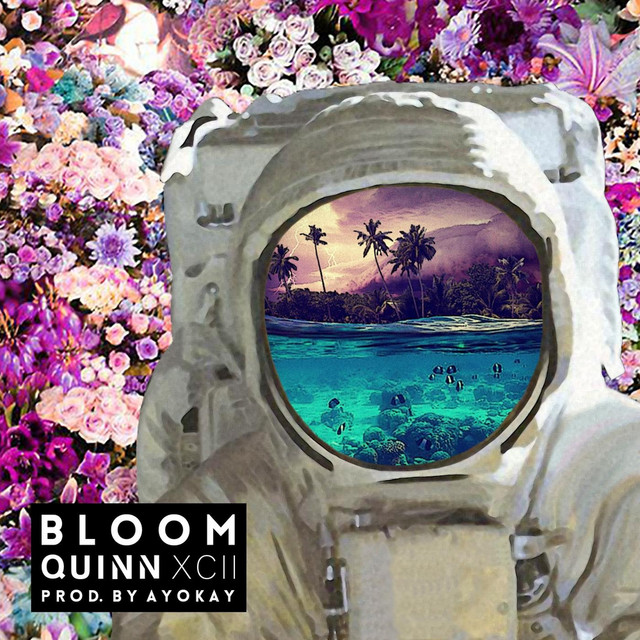 Album cover for Bloom by Quinn XCII