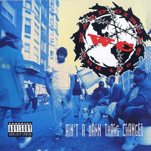 Ain't a Damn Thang Changed album
