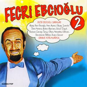Fecri Ebcioğlu, Vol. 2