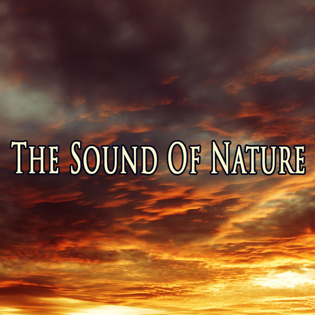 Album cover for The Sound Of Nature by Nature Sounds, Rain Sounds, White Noise Research