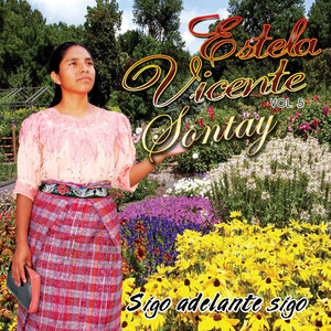 Sigo Adelante Sigo, Vol. 5 Albumcover