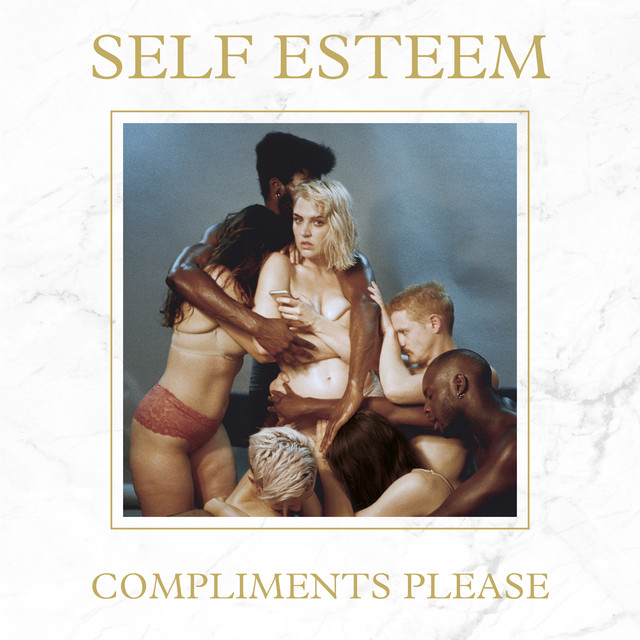 Album cover for Compliments Please by Self Esteem