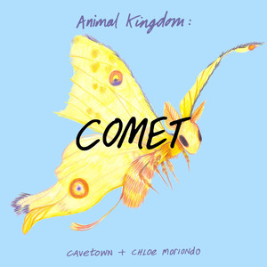Animal Kingdom: Comet - Cavetown