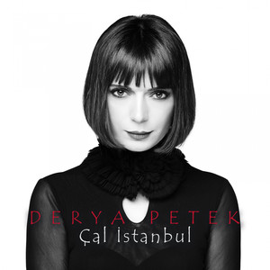 Çal İstanbul Albümü